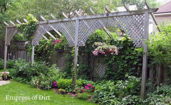 How to make a fence taller empress of dirt for Garden screening ideas