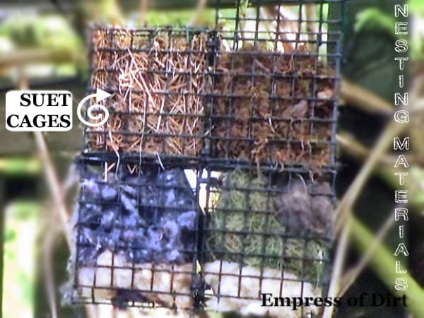 Nesting Materials In Suet Cages