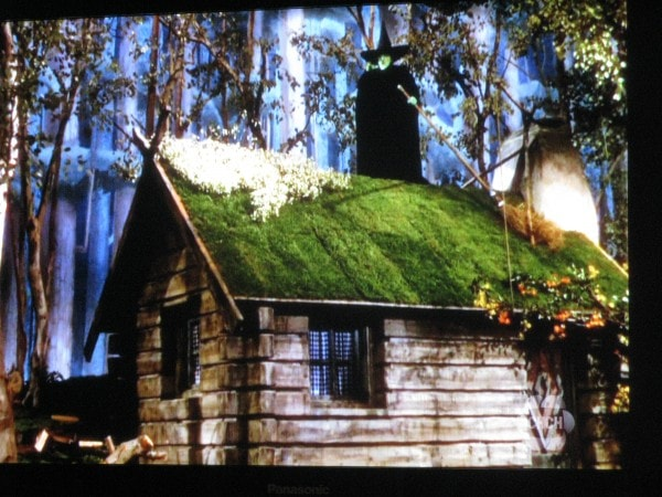 Witch On Green Roof