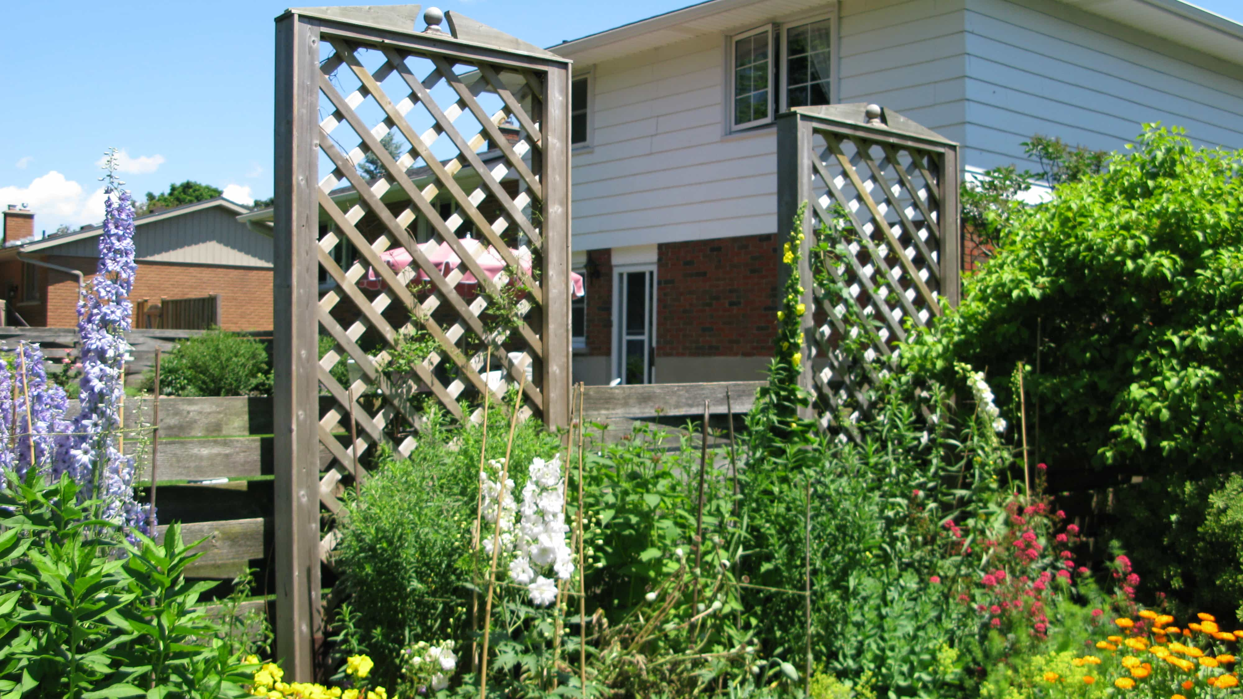How to make a fence taller empress of dirt for Outdoor lattice