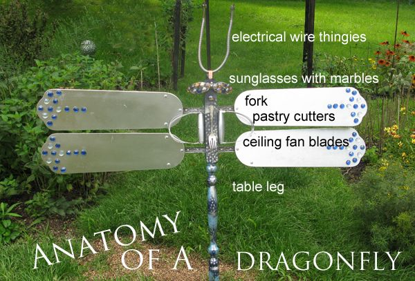 How to make a garden art dragonfly empress of dirt anatomy of a dragonfly mozeypictures Choice Image