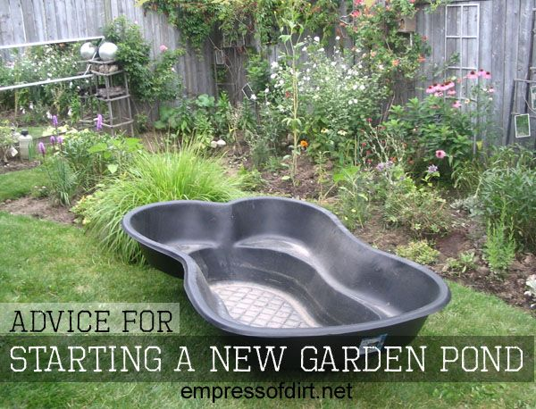 Make a little pond tips tricks and project ideas Making a pond