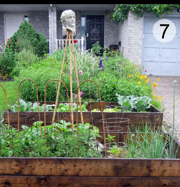 how to build raised veg garden boxes for canadian climate