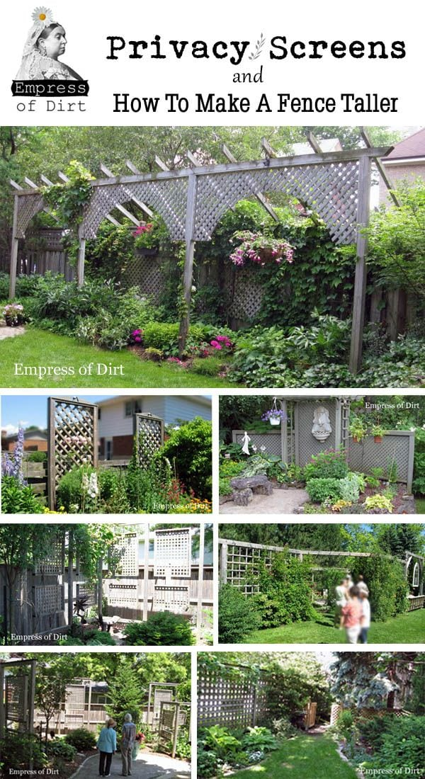 Ideas For Backyard Privacy Screens :  privacy screen ideas source http www pic2fly com outdoor screen ideas