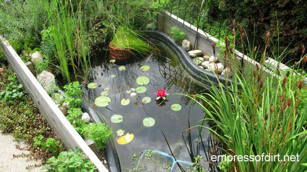 How to create a dream garden on a low budget empress of dirt for Creating a garden pond