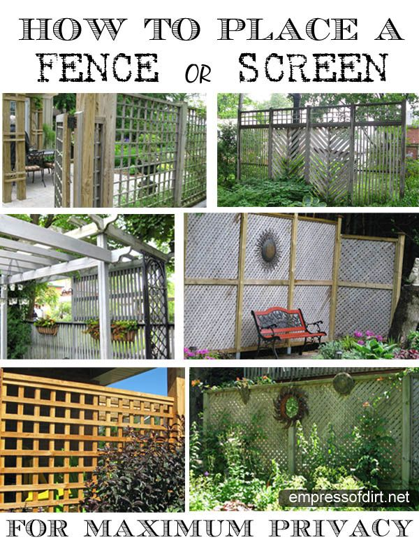 Garden fence or screen privacy ideas empress of dirt for Privacy from neighbors ideas