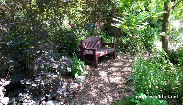 Bench on Shady Path