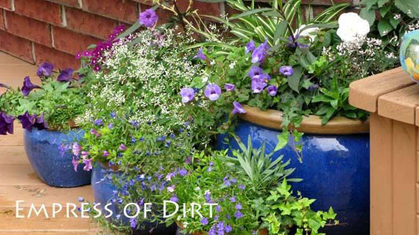 30 garden container ideas blue containers