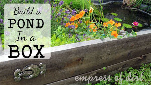 30 Garden container ideas | Pond in a raised bed