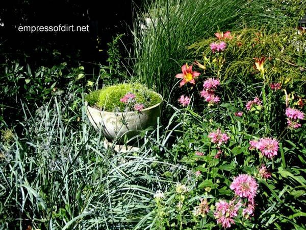 30 Garden container ideas | Concrete birdbath planter