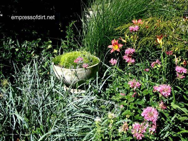 30 Garden container ideas | Concrete birdbath planter