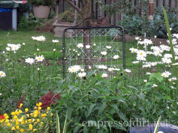 old gate - home garden tour