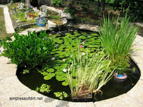 30 Garden container ideas | Pond in a container