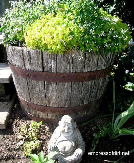 30 Garden container ideas | Whiskey barrel