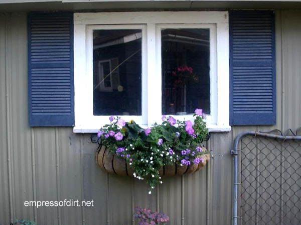 30 Garden container ideas | Window box