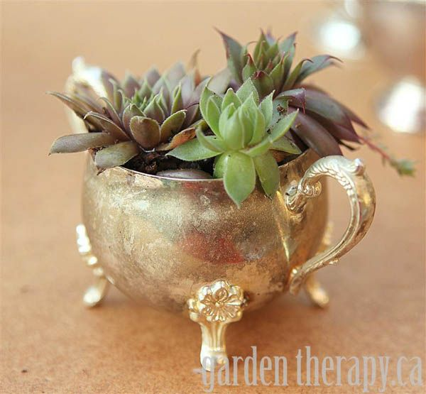 Great garden party ideas: Vintage silver planters via http://gardentherapy.ca