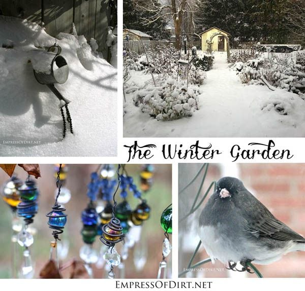 The beauty of the winter garden