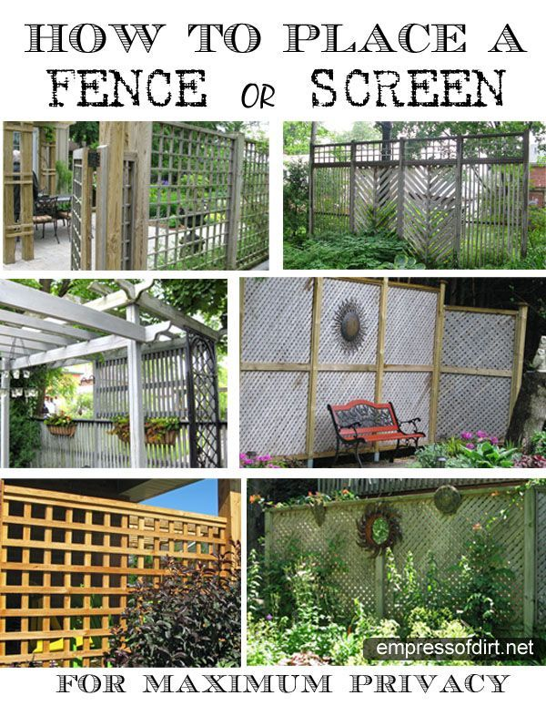 Diy privacy fence ideas for Cheap fence screening