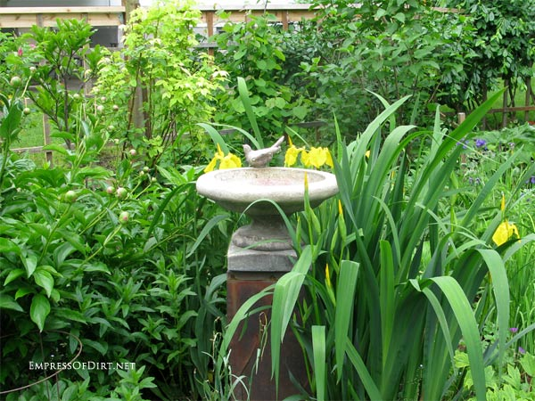 Broken bird bath? Plant it! | Concrete bird bath with decorative bird