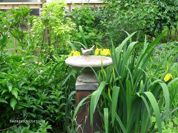 Broken bird bath? Plant it! | Concrete bird bath with decorative bird