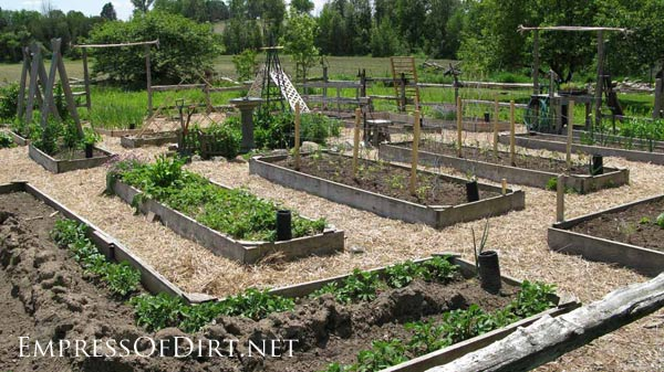 20+ Ideas for your home veggie garden - raised beds with straw paths