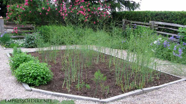 20+ Ideas for your home veggie garden - raised beds with stone borders and pea gravel pathways