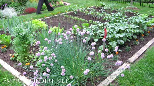20+ Ideas for your home veggie garden - raised beds with railway tie-style borders