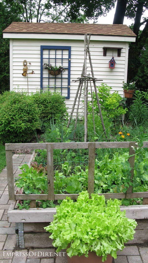 Veggie Garden Ideas on Raised Vegetable Garden Design