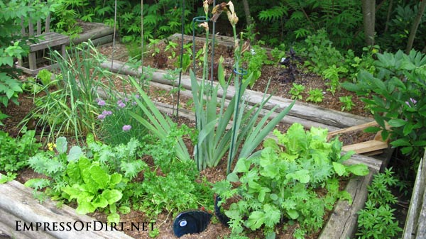 20+ Ideas for home veggie gardens - use railway style wood for the beds